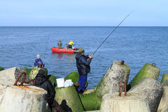 Sea fishing - fishermen catch a sprat in the Baltic Sea Stock Image
