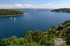 Sea fjord summer landscape Royalty Free Stock Images