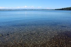 Sea floor under clear water at Drayton Harbor, Blaine, Washington Stock Image