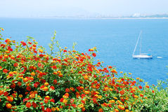 Sea and flowers Stock Image