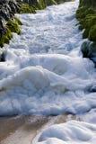 Sea foam Royalty Free Stock Photo