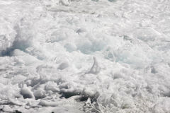 Sea foam Royalty Free Stock Photo
