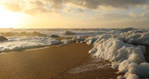 Sea foam on the beach at sunset stock video footage