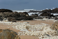 Sea foam Royalty Free Stock Photos
