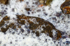 Sea Foam - Stone Royalty Free Stock Photos