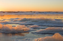 Sea Foam. At sunset on a beach Royalty Free Stock Photography