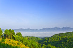 Sea of fog among the Namprao valley,Phrae,Thailand Stock Photography