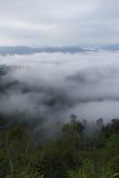 Sea fog. Pa nern tung sea fog kang kra jan thailand national park royalty free stock images