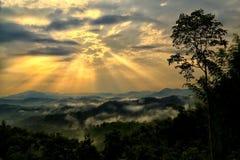 Sea fog The point of view of  Huay Ton Hai on Narayana mountain, Sukhothai. Royalty Free Stock Photo