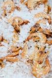 Sea food 2 Royalty Free Stock Photo