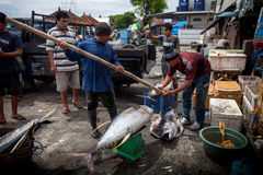 Sea Food Bali, Popular Fish Market Jimbaran, Indonesia Royalty Free Stock Photo