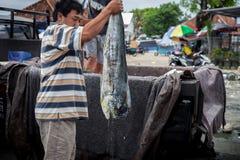 Sea Food Bali, Popular Fish market Jimbaran, Indonesia Stock Photos