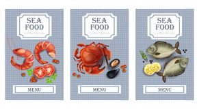 Sea food cards Vector realistic. Layout Template with crabs, fish, shrimps and caviars. Sea food cards Vector realistic. Layout Template with crabs, fish Royalty Free Stock Image