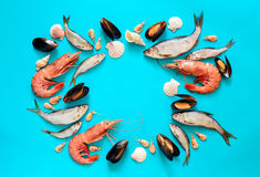 Sea food composition Royalty Free Stock Photo