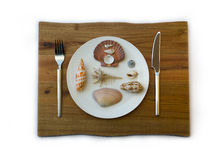 Sea food concept. Shells on a plate Stock Image