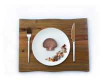 Sea food concept. Shells on a plate Royalty Free Stock Image