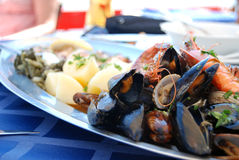 Sea food. On the dish Stock Images