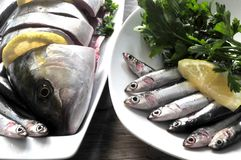 Sea food fish raw for cooking Royalty Free Stock Photos