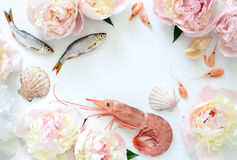 Sea food and flowers background Stock Image