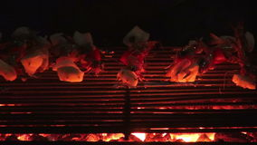 Sea food grill Barbecue Party. Barbecue With Delicious Sea Food On Grill. stock video