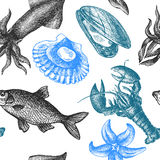 Sea food illustration Royalty Free Stock Images