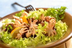 Sea food in the lettuce Stock Photography