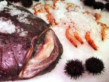 Sea Food, Madrid Royalty Free Stock Photos