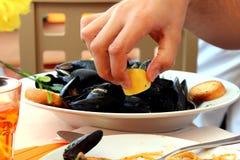 Sea food. Mossel black shells in a restaurant Stock Photos