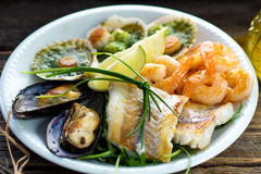 Sea food plate Stock Photos