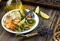 Sea food plate. On wooden background Stock Images