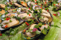 Sea food salad. Delicious mussels and a green salad stock images