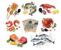 Sea food set collection Vector realistic. Salmon steak, Crabs, fish, shrimps and caviars. Sea food set collection Vector realistic. Salmon steak, Crabs, fish Stock Photo