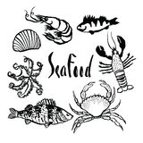 Sea food set Stock Photography