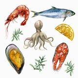 Sea Food Set Royalty Free Stock Photo