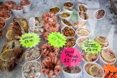 Sea food snack  with price Royalty Free Stock Image
