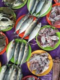 Sea food. A top shot of freshly caught seafood at a local market in Selangor Malaysia Royalty Free Stock Photos
