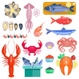 Sea food vector illustration. Infographic business seafood flat lay idea. Vector illustration hipster concept. Can be used for layout, advertising and web Stock Photo