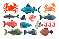 Sea food vector illustration. Seafood flat tasty cooking delicious vector illustration. Can be used for layout, advertising and web design. Gourmet restaurant Stock Photography
