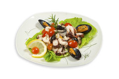 Sea food and vegetables on plate Royalty Free Stock Photo