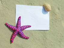 Sea frame with starfishes. Sea frame with some starfishes stock photos