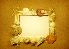 Sea frame with starfishes. Sea frame with some starfishes and shell royalty free stock photography