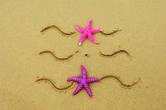 Sea frame with starfishes. Sea frame with some starfishes Stock Photography