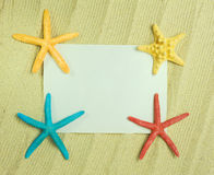 Sea frame with starfishes. Sea frame with some starfishes and shell Stock Photo