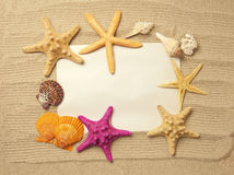 Sea frame with starfishes Royalty Free Stock Photos