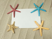 Sea frame with starfishes. Sea frame with some starfishes and shell Stock Images