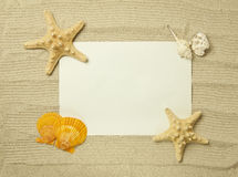 Sea frame with starfishes. Sea frame with some starfishes and shell Royalty Free Stock Image