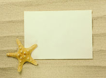 Sea frame with starfishes. Sea frame with some starfishes and shell Royalty Free Stock Photos