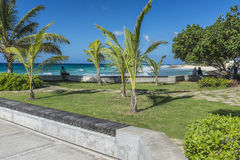 Sea front at Hastings Rocks Barbados Royalty Free Stock Image