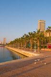 Sea-front with palm trees. In Alicante, Spain Royalty Free Stock Photography