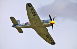 Sea fury Stock Photography